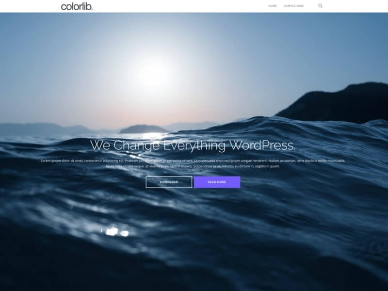 Preview of the Shapely WordPress theme.