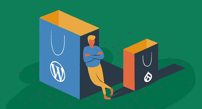Bags with the WordPress and Drupal logos illustrate e-commerce differences.