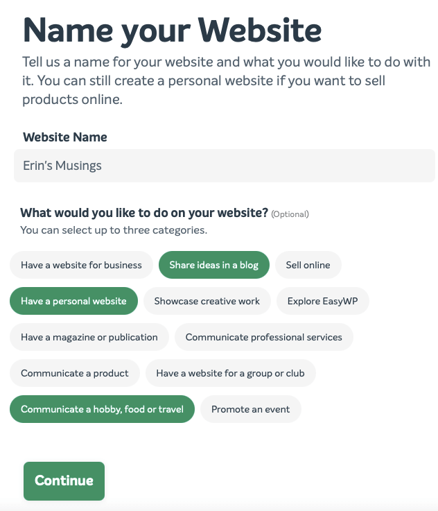 A completed version of the Name your Website tool